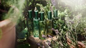 JML - The Herb Garden - One