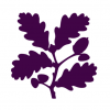 YORKSHIRE NATIONAL TRUST AUGUST ACTIVITIES AND EVENTS