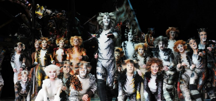 CATS THE MUSICAL IS BACK